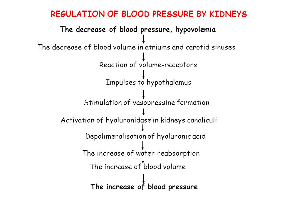 REGULATION OF BLOOD PRESSURE BY KIDNEYS