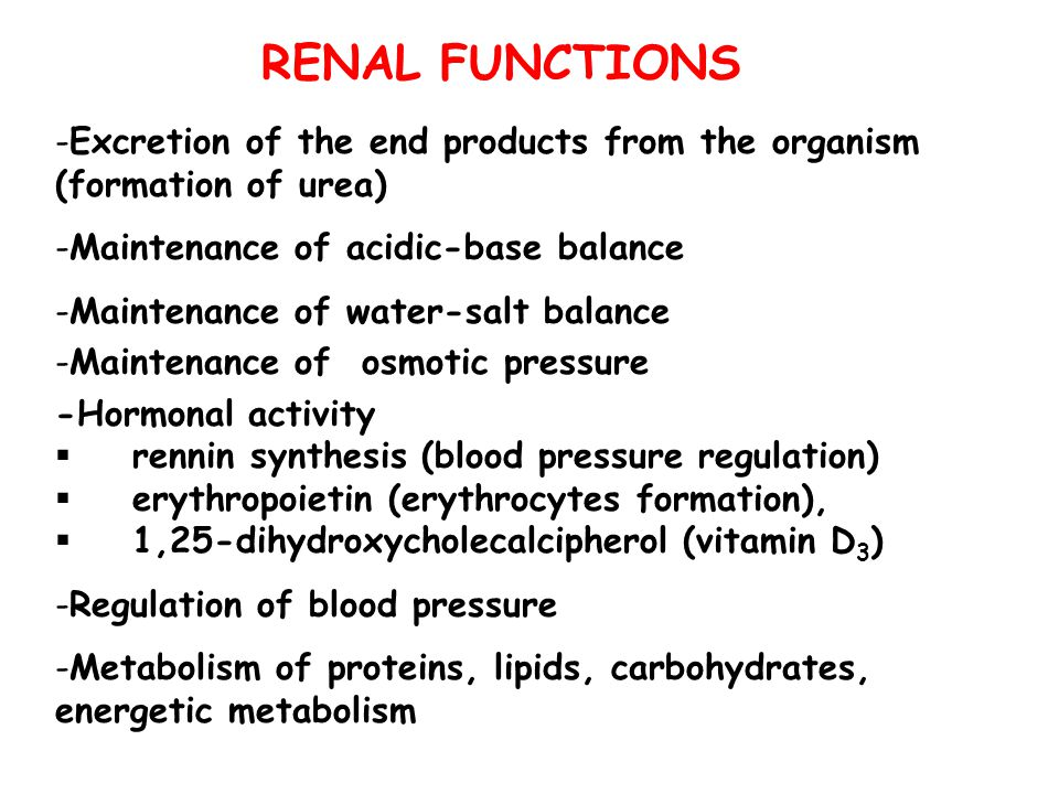 RENAL FUNCTIONS Excretion of the end products from the organism (formation of urea) Maintenance of acidic-base balance.