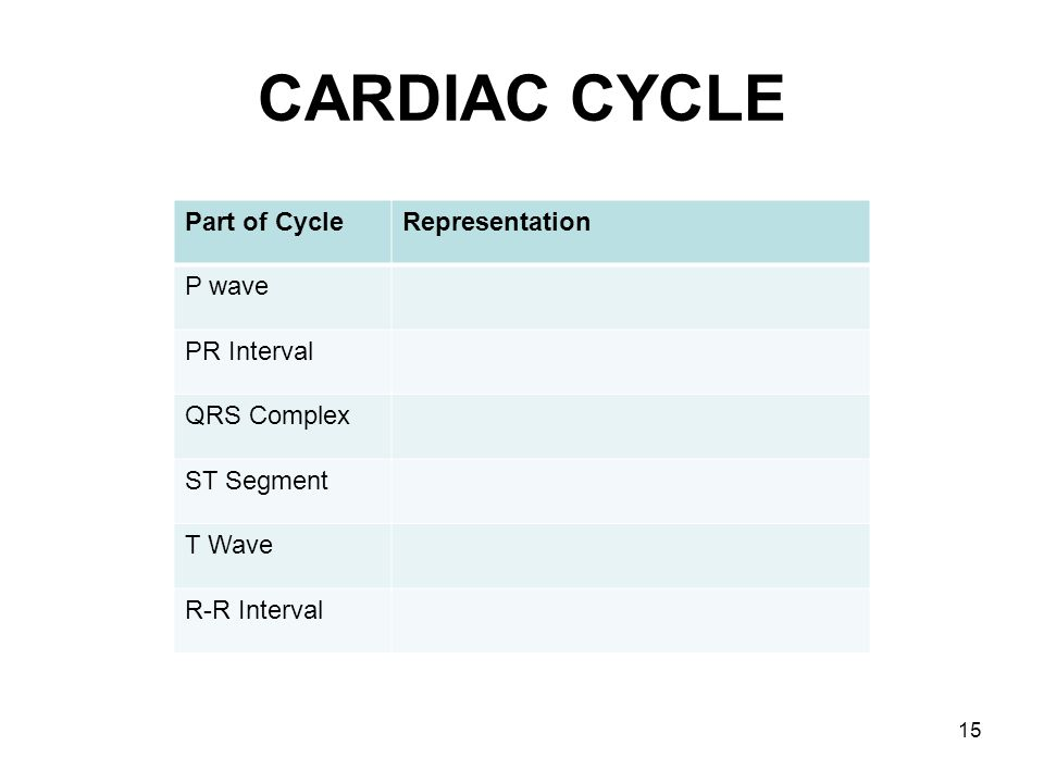 CARDIAC CYCLE Part of Cycle Representation P wave PR Interval