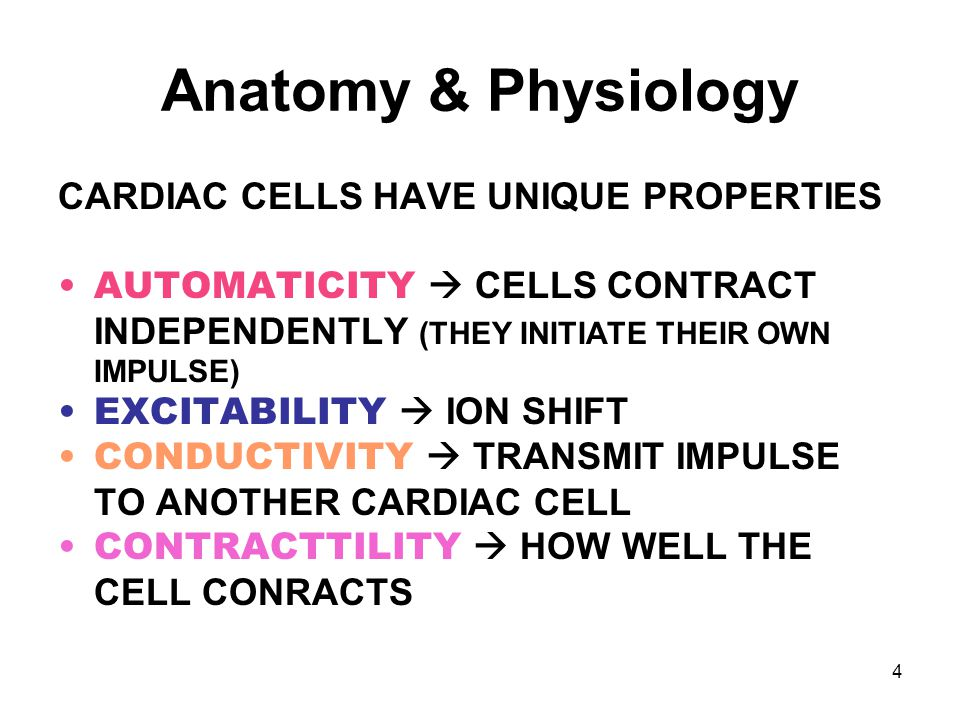 Anatomy & Physiology CARDIAC CELLS HAVE UNIQUE PROPERTIES