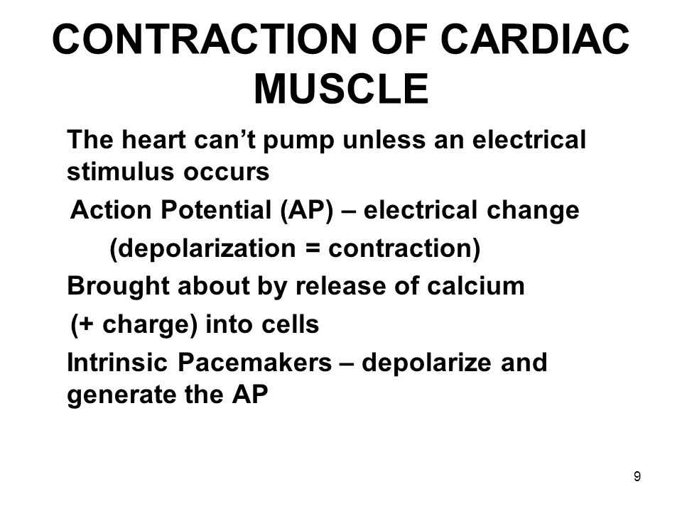 CONTRACTION OF CARDIAC MUSCLE