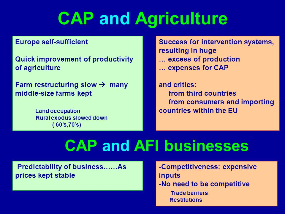 CAP and Agriculture CAP and AFI businesses Europe self-sufficient