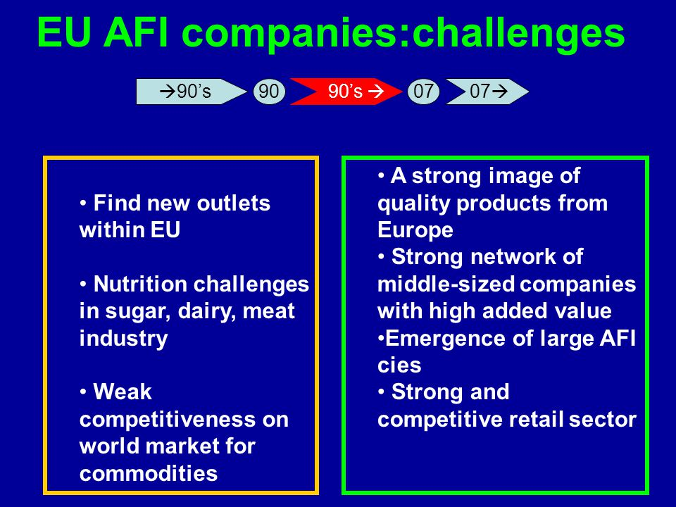 EU AFI companies:challenges