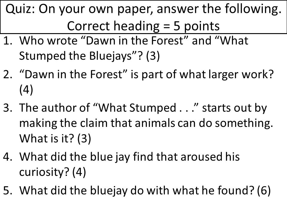 Quiz: On your own paper, answer the following