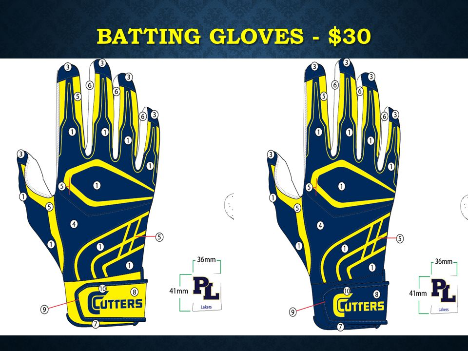 Batting gloves - $30