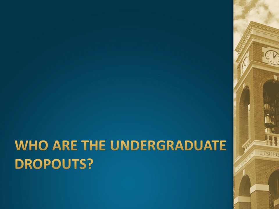 Who are the Undergraduate Dropouts