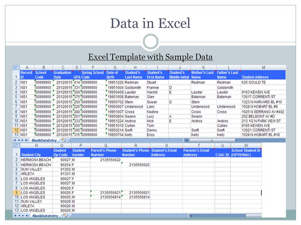 Excel Template with Sample Data