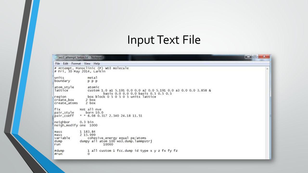 Input Text File
