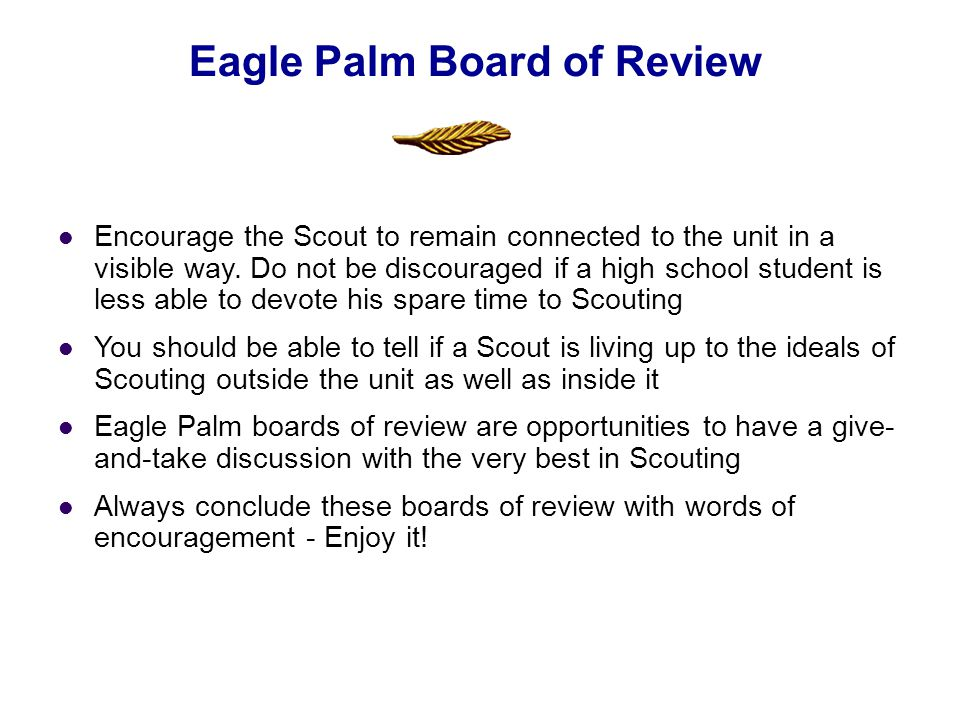 Eagle Palm Board of Review