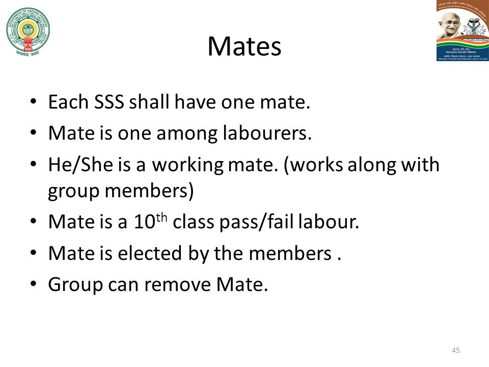 Mates Each SSS shall have one mate. Mate is one among labourers.