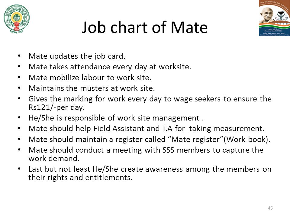 Job chart of Mate Mate updates the job card.