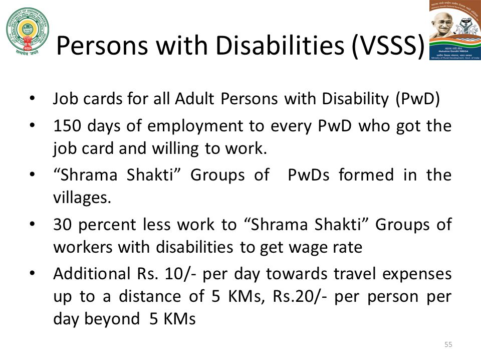 Persons with Disabilities (VSSS)