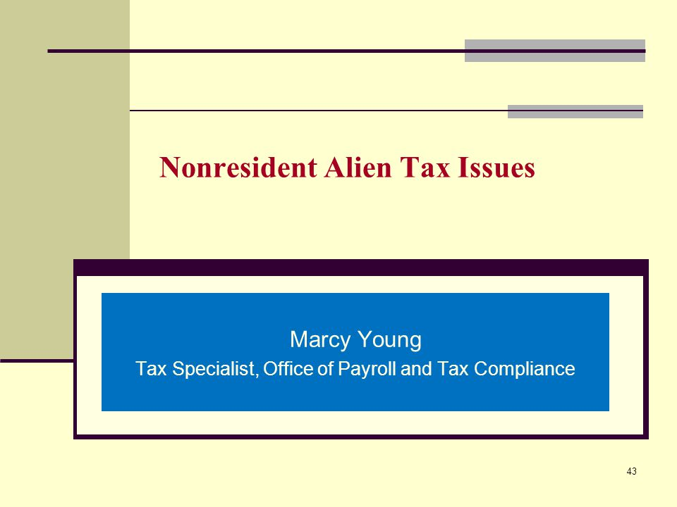 Nonresident Alien Tax Issues