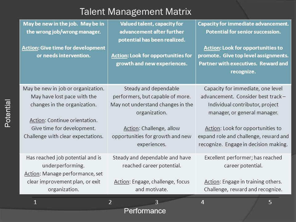 Talent Management Matrix
