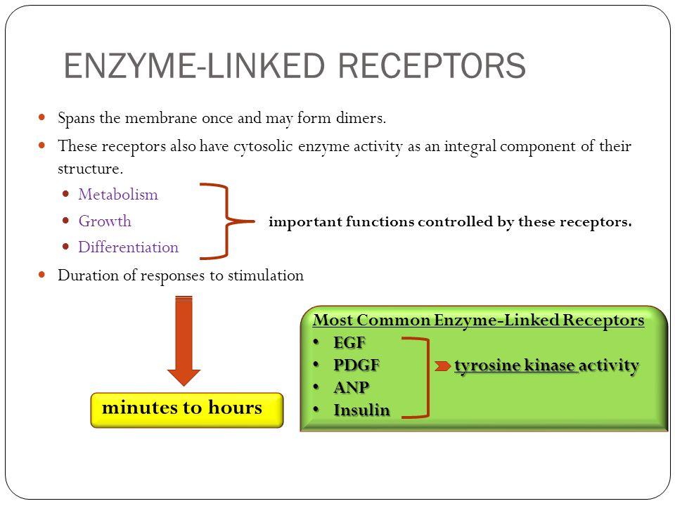 ENZYME-LINKED RECEPTORS