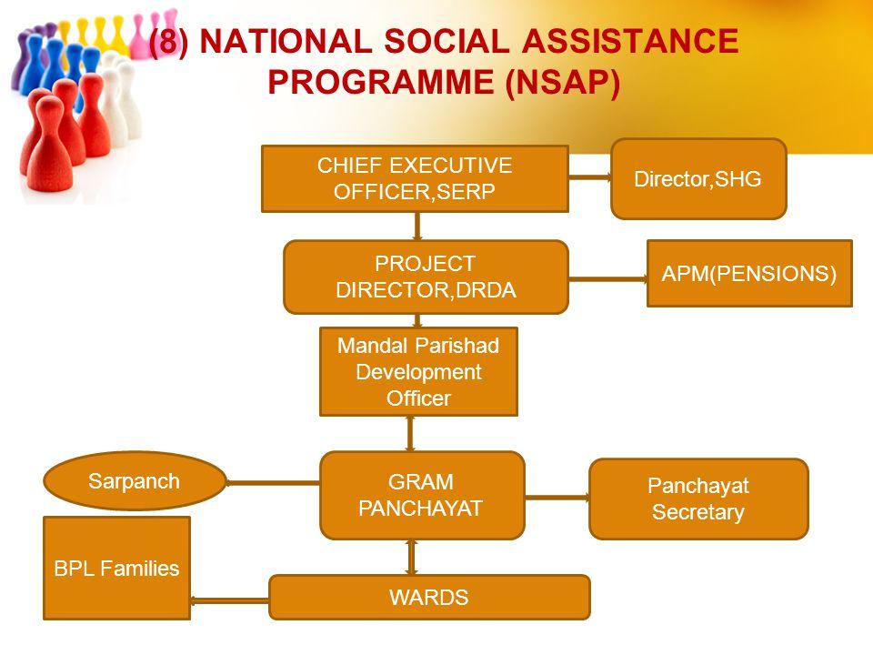 (8) NATIONAL SOCIAL ASSISTANCE PROGRAMME (NSAP)