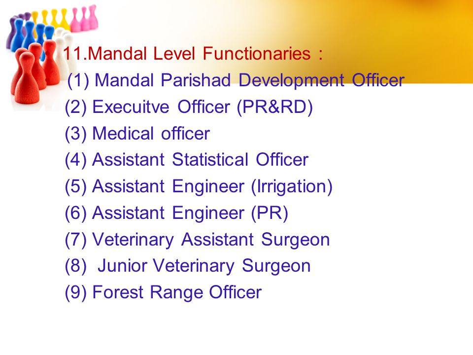 11.Mandal Level Functionaries :