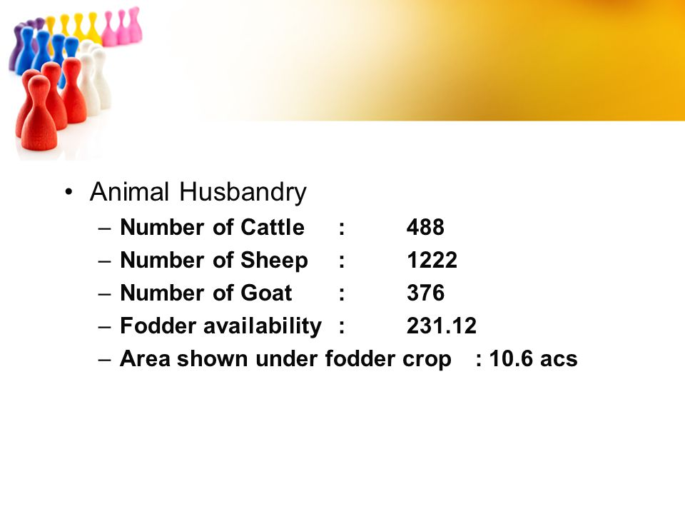 Animal Husbandry Number of Cattle : 488 Number of Sheep : 1222