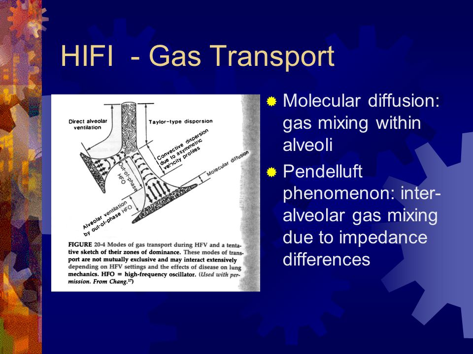 HIFI - Gas Transport Molecular diffusion: gas mixing within alveoli