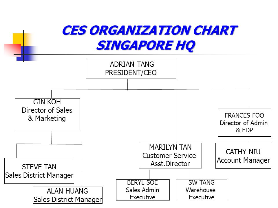 CES ORGANIZATION CHART SINGAPORE HQ