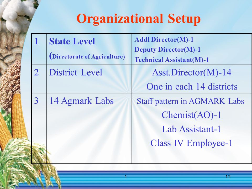 Organizational Setup 1 State Level (Directorate of Agriculture) 2