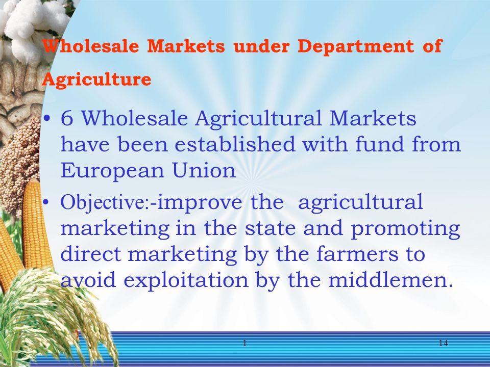 Wholesale Markets under Department of Agriculture