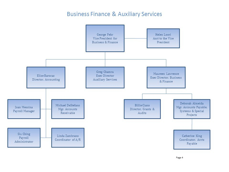 Business Finance & Auxiliary Services
