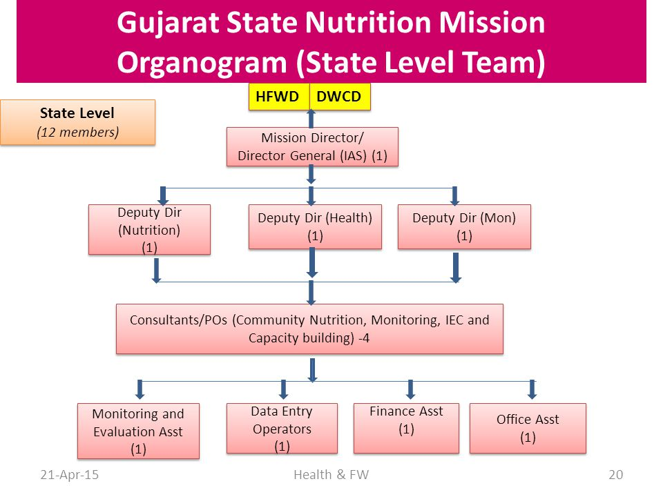 Gujarat State Nutrition Mission Organogram (State Level Team)