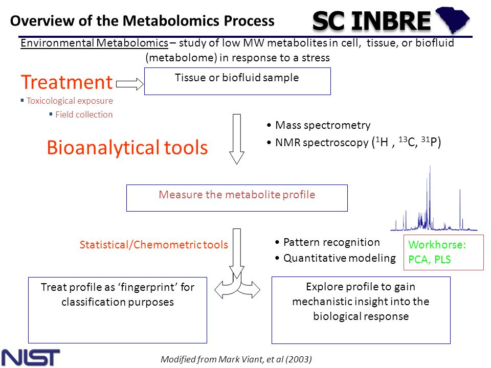 Treatment Bioanalytical tools Overview of the Metabolomics Process