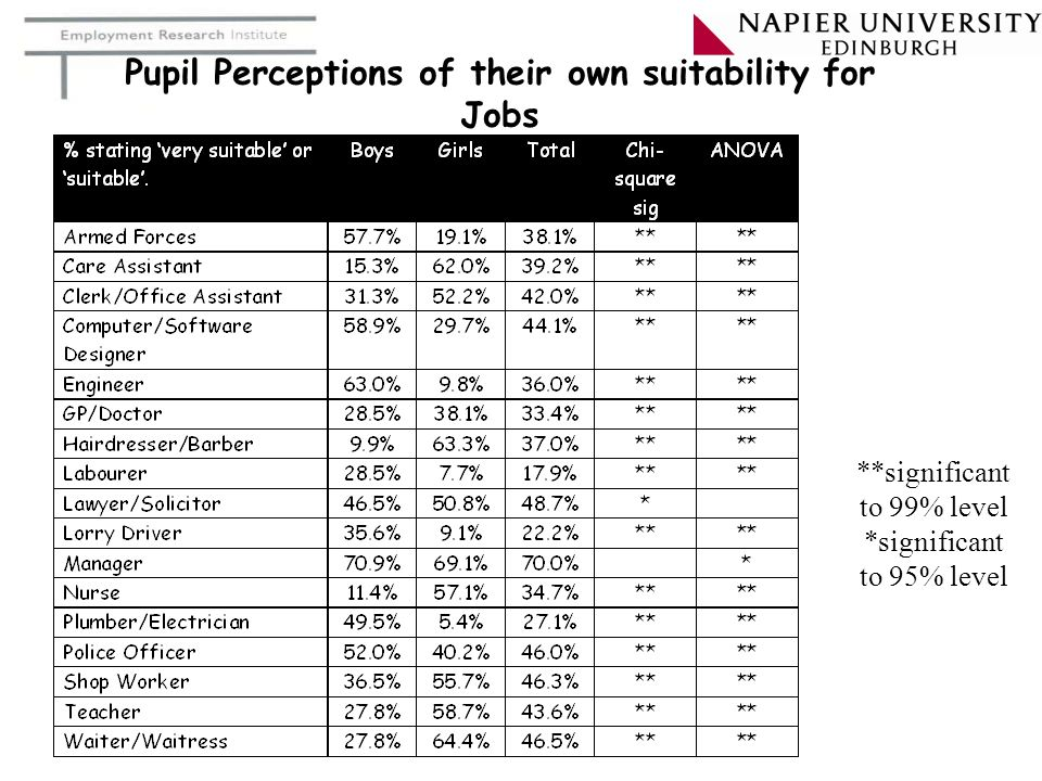 Pupil Perceptions of their own suitability for Jobs