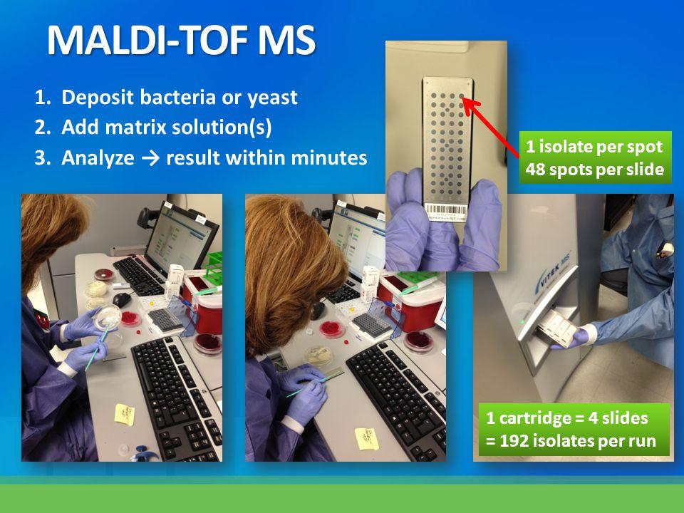 MALDI-TOF MS Deposit bacteria or yeast Add matrix solution(s)