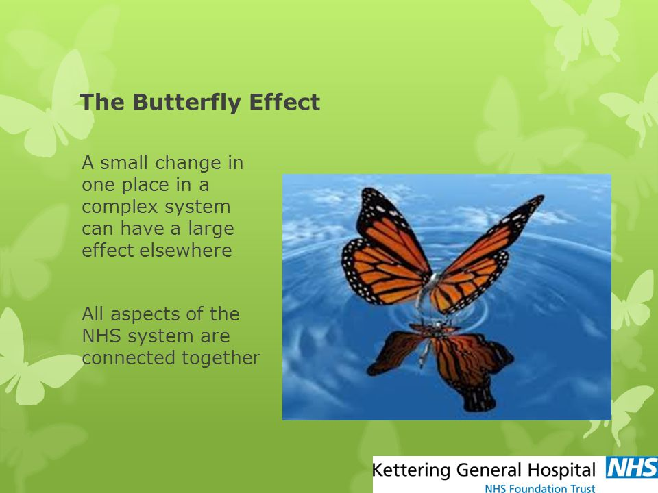 The Butterfly Effect A small change in one place in a complex system can have a large effect elsewhere.