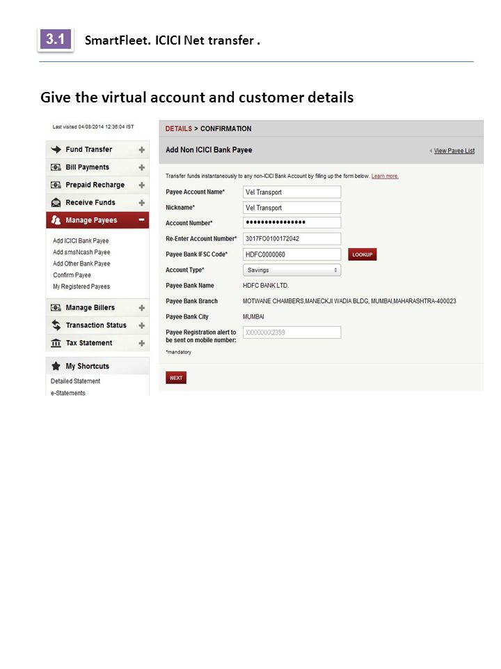Give the virtual account and customer details