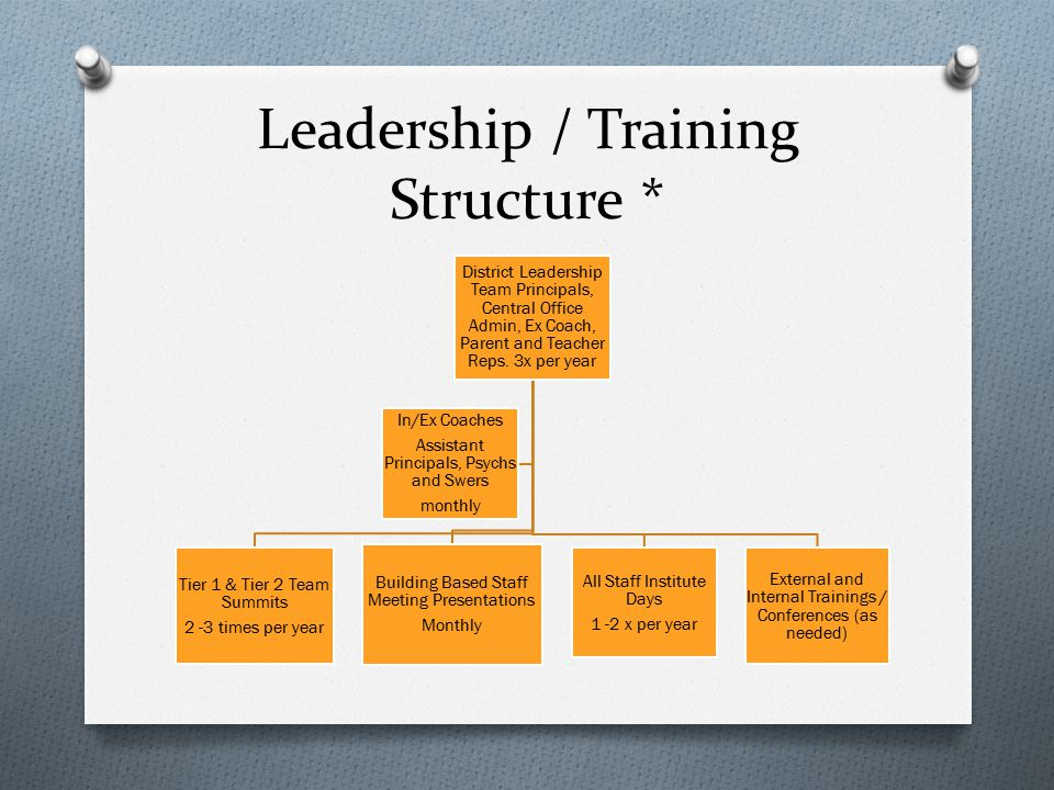 Leadership / Training Structure *