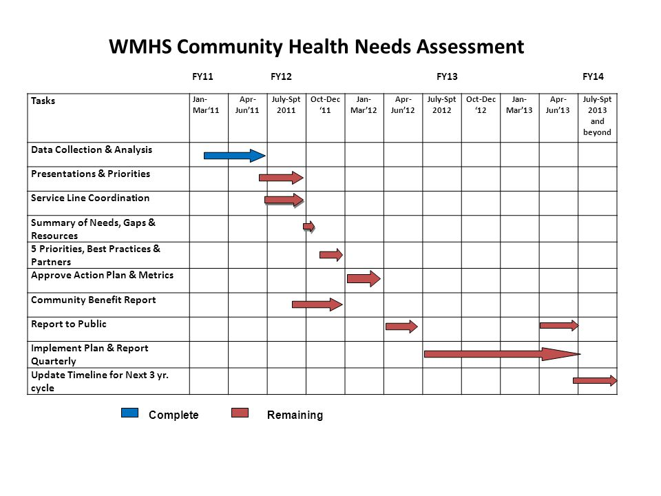 WMHS Community Health Needs Assessment