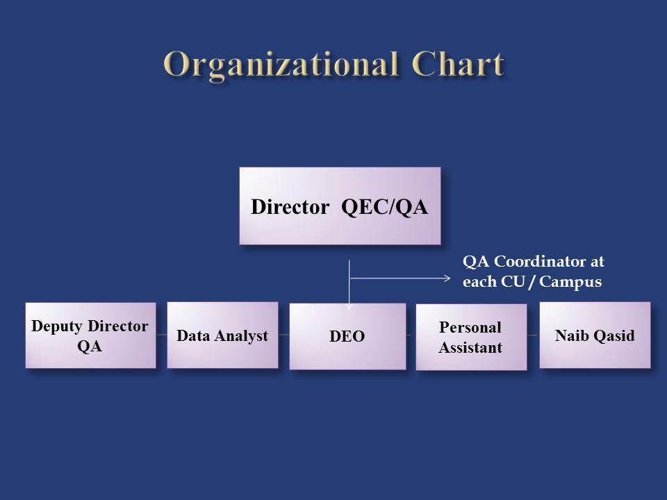 Organizational Chart Director QEC/QA QA Coordinator at