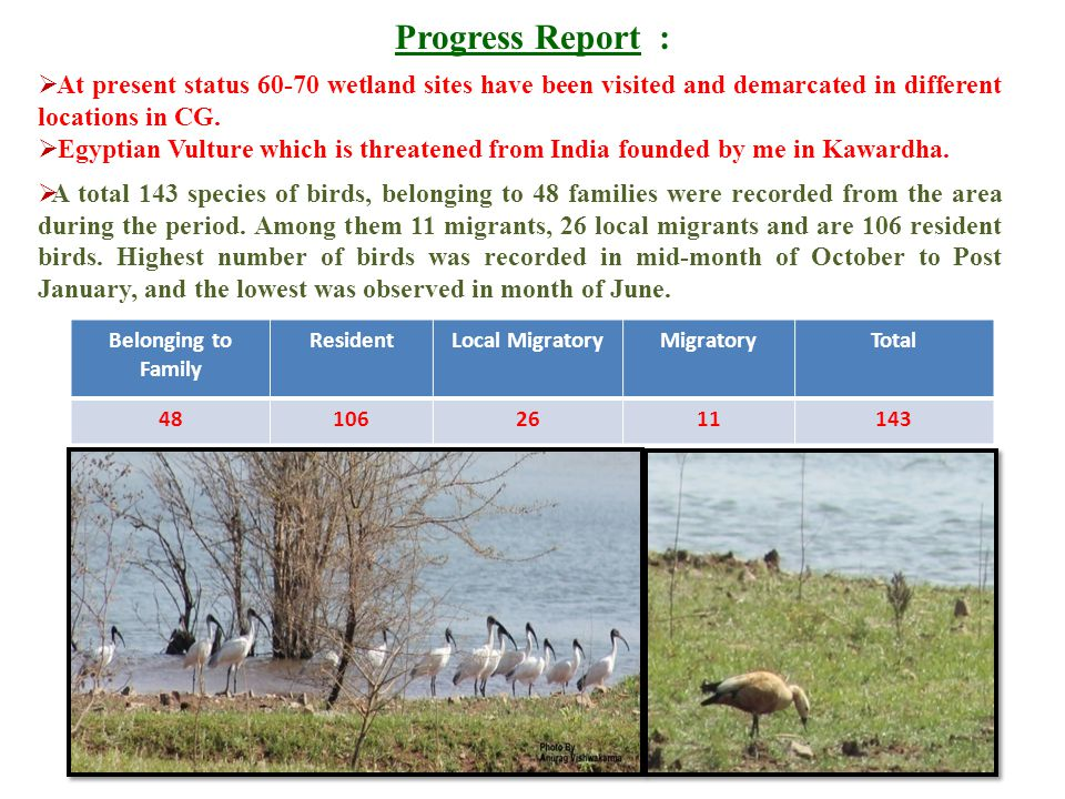 Progress Report : At present status wetland sites have been visited and demarcated in different locations in CG.