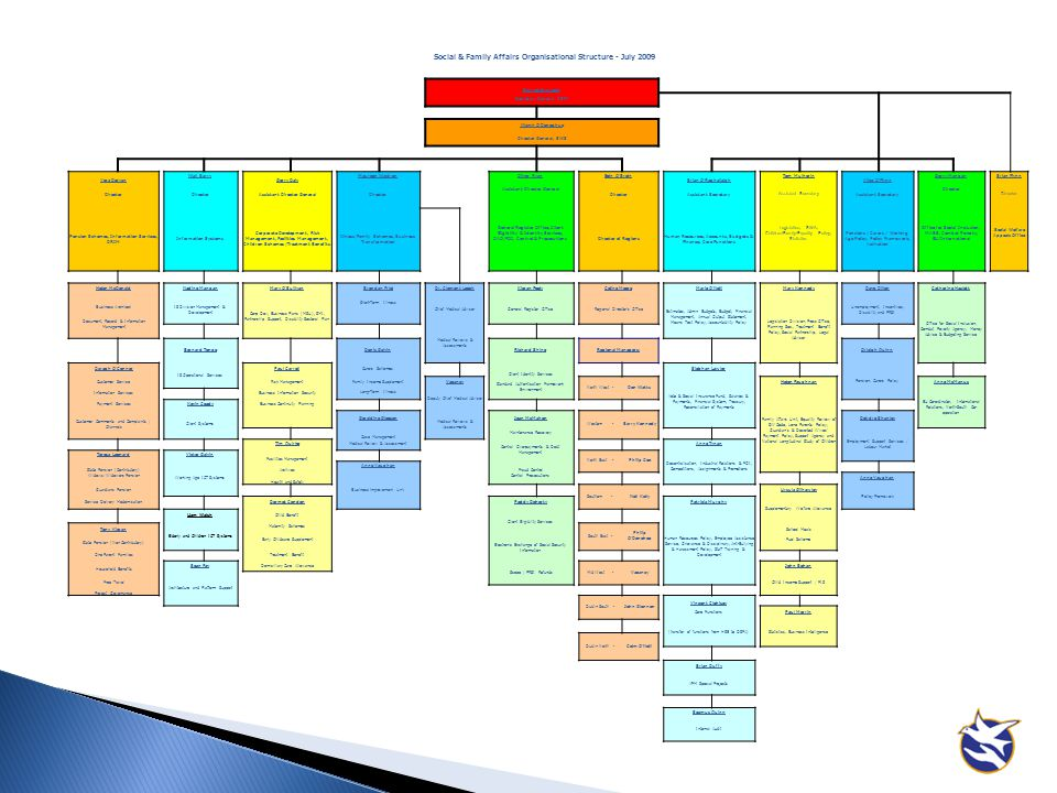 Social & Family Affairs Organisational Structure - July 2009