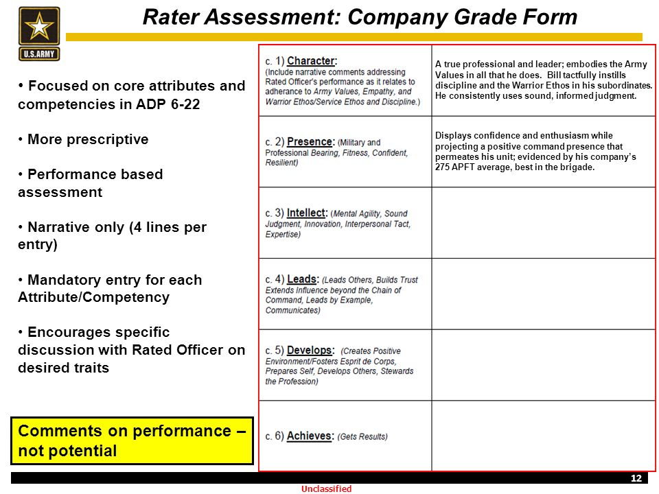 Rater Assessment: Company Grade Form