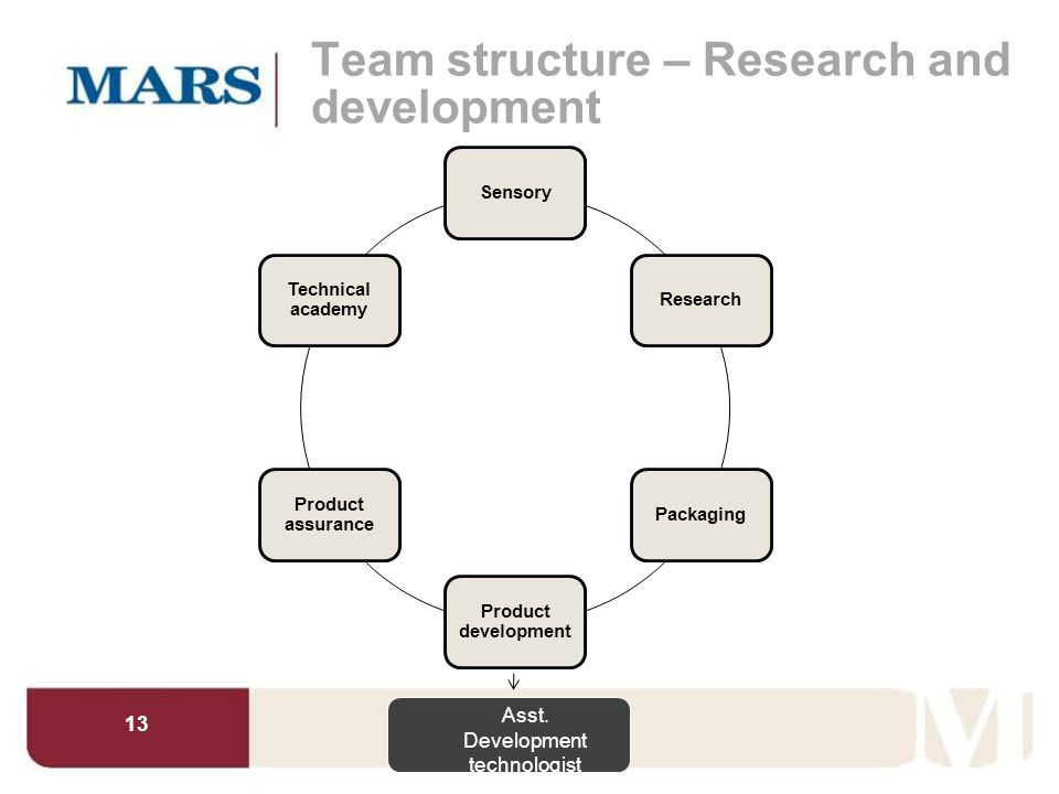 Team structure – Research and development