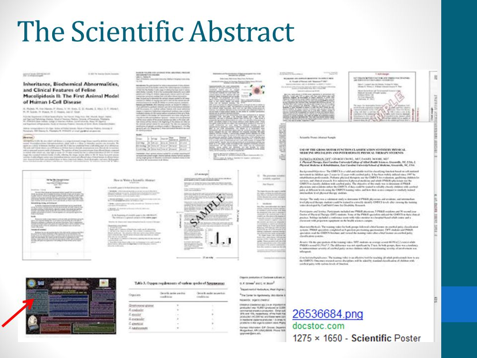 The Scientific Abstract