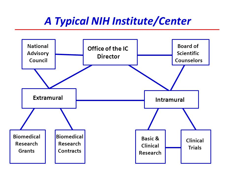 A Typical NIH Institute/Center