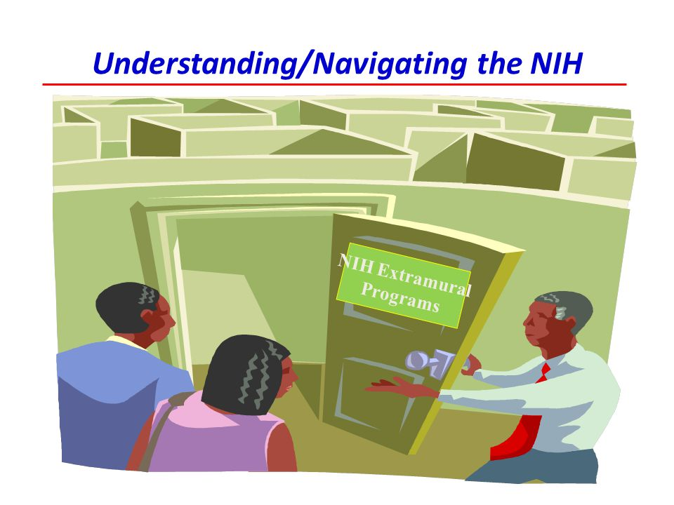 Understanding/Navigating the NIH