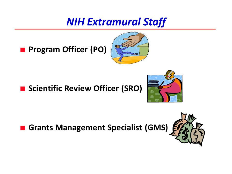 NIH Extramural Staff Program Officer (PO)
