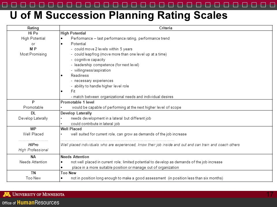 U of M Succession Planning Rating Scales