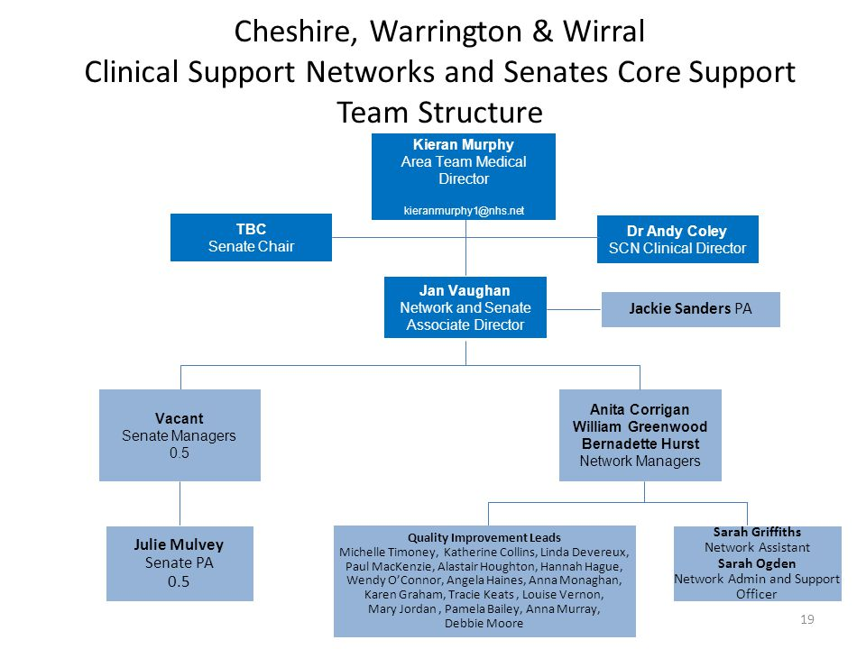 Cheshire, Warrington & Wirral Clinical Support Networks and Senates Core Support Team Structure