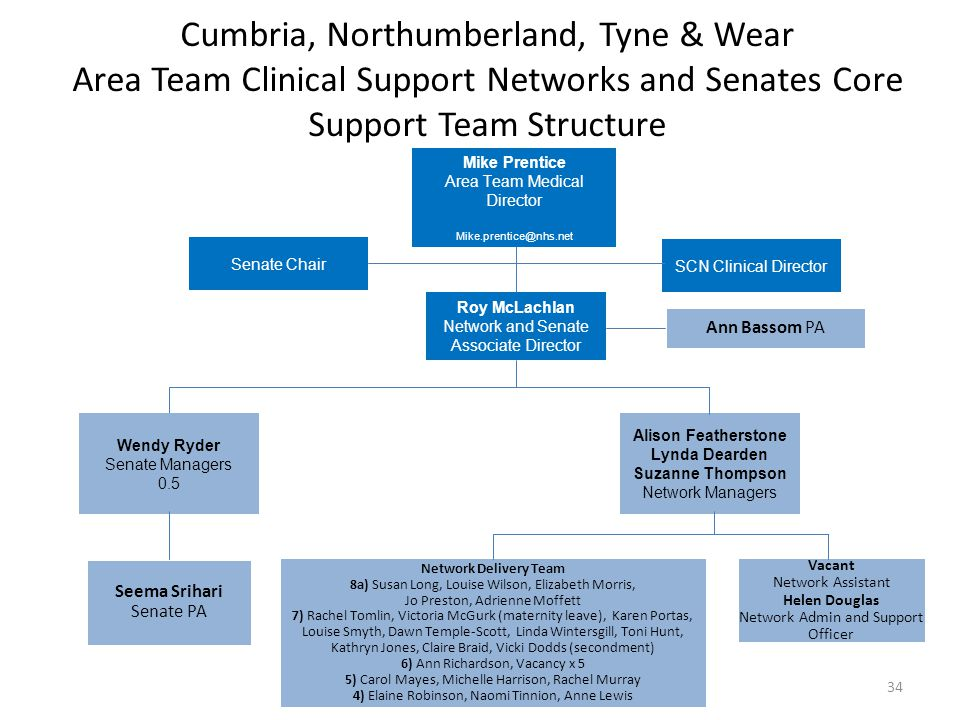 Cumbria, Northumberland, Tyne & Wear Area Team Clinical Support Networks and Senates Core Support Team Structure