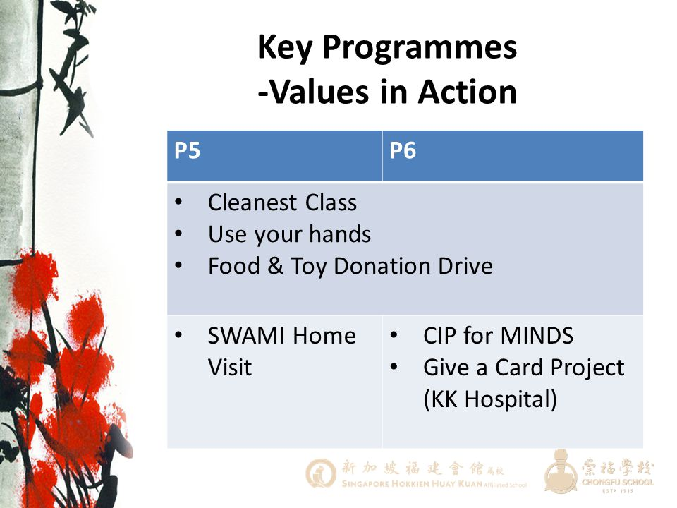 Key Programmes -Values in Action