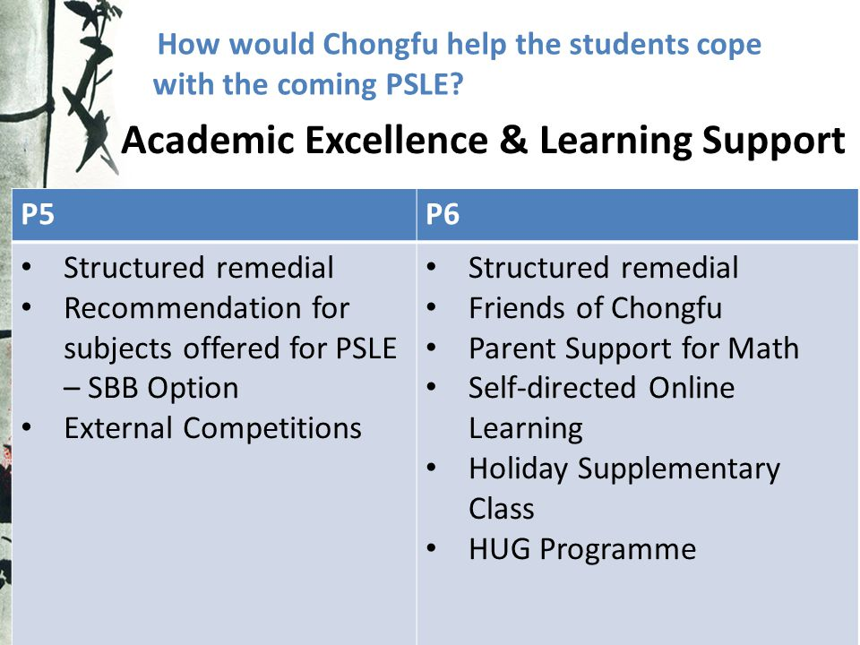 Academic Excellence & Learning Support