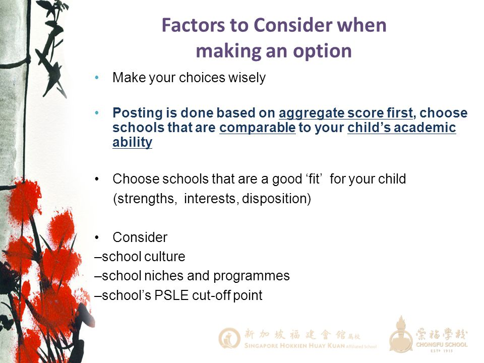 Factors to Consider when making an option